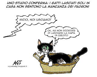 gatti, gatto, umorismo, satira vignetta
