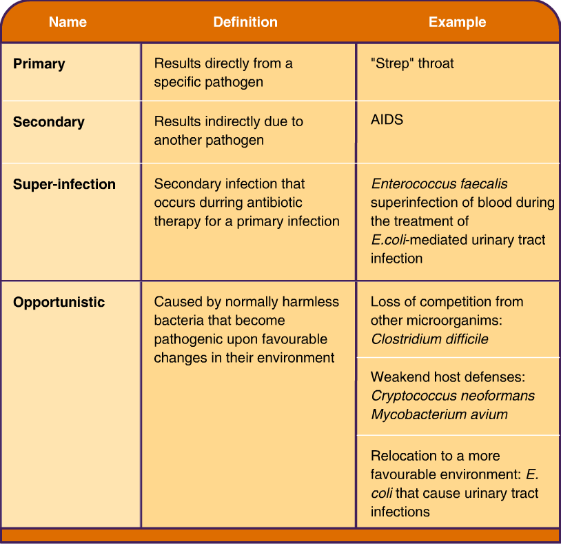 Bacterial causes of nosocomial pneumonia