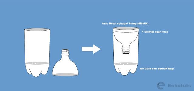 tutup botol - Cara Membuat Perangkap Nyamuk Dengan Botol Bekas - echotuts