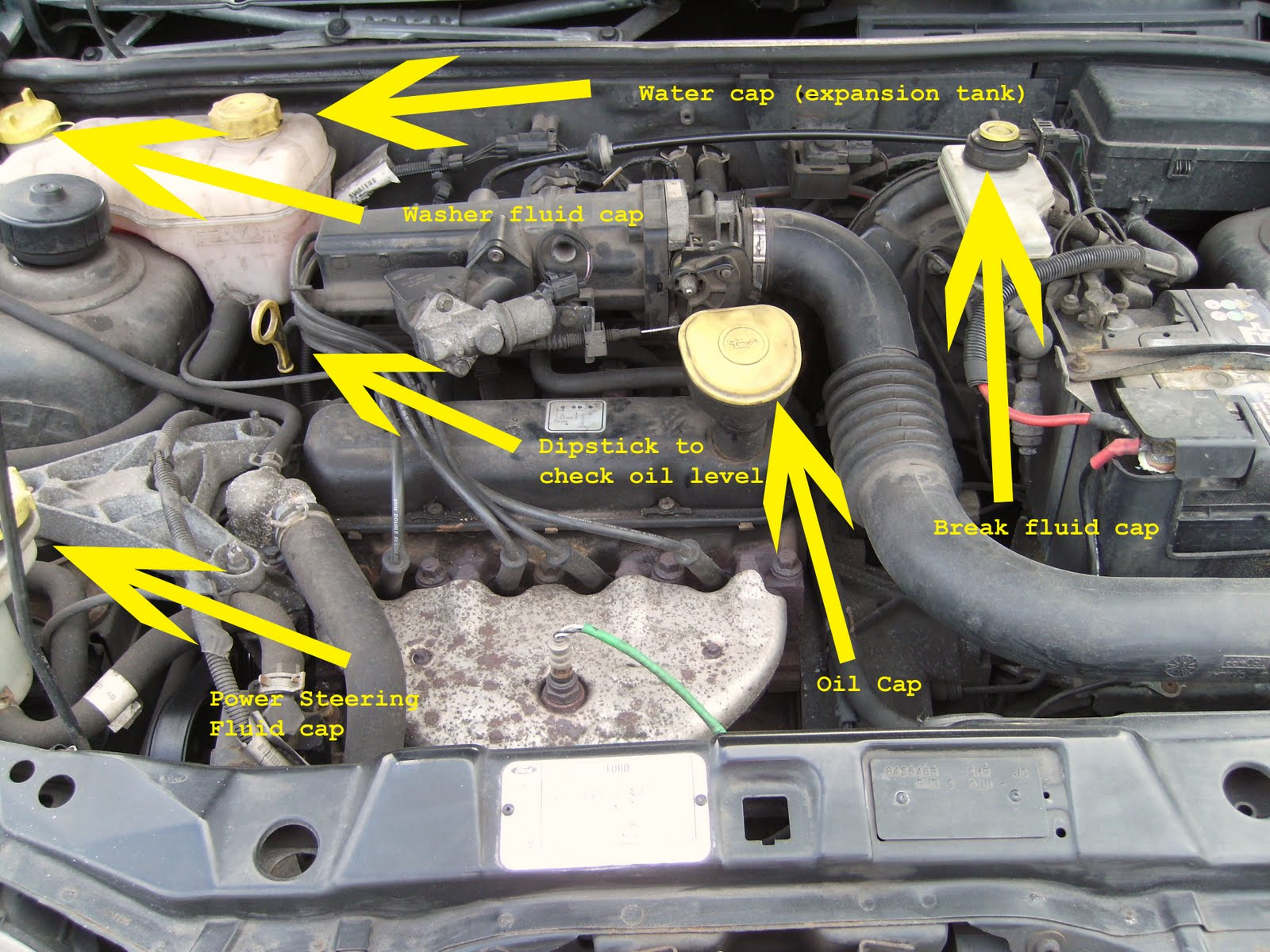 How To Check Your Water In A Ford Fiesta
