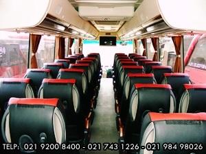 Interior BigBus 43-37 Seat