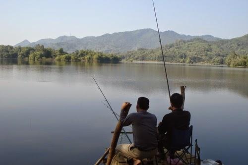 Câu cá tại ao hồ