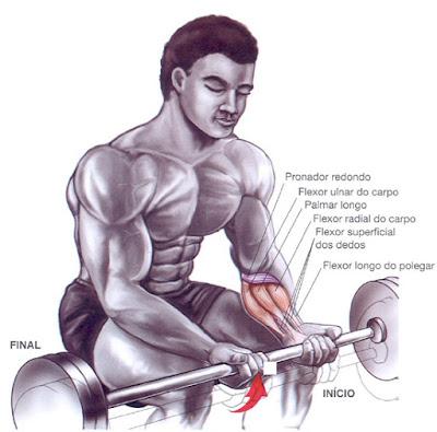 exercicio-antebracos
