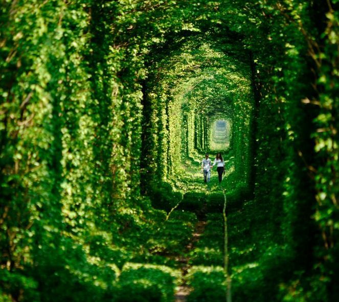 tunnel+of+love+of+ukraine+is+the+best+place+to+visit