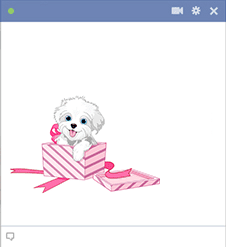 Puppy in pink present