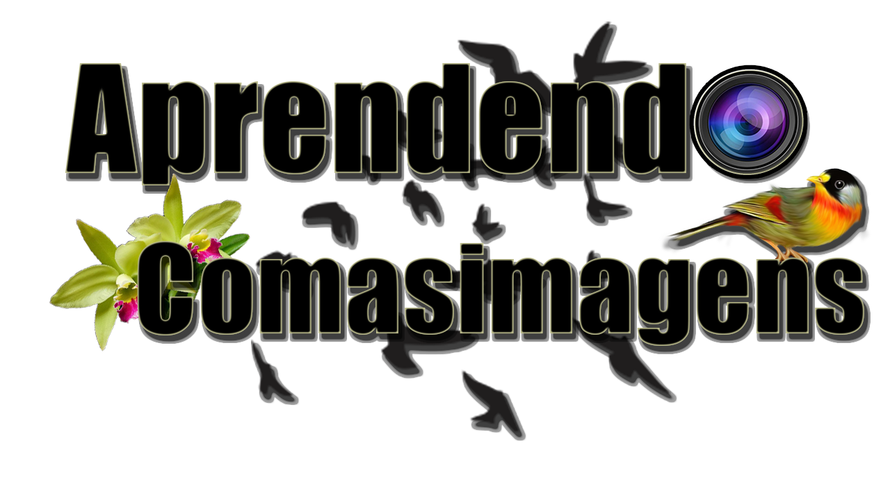 APRENDENDO COM AS IMAGENS...