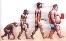 A Obesidade Evolutiva