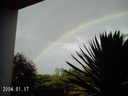 Rainbow from my balcony