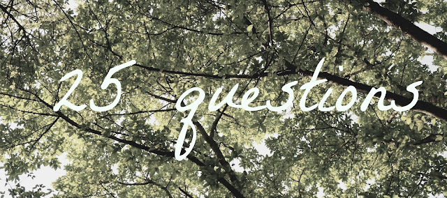 25 questions tag - title text on a leafy tree background
