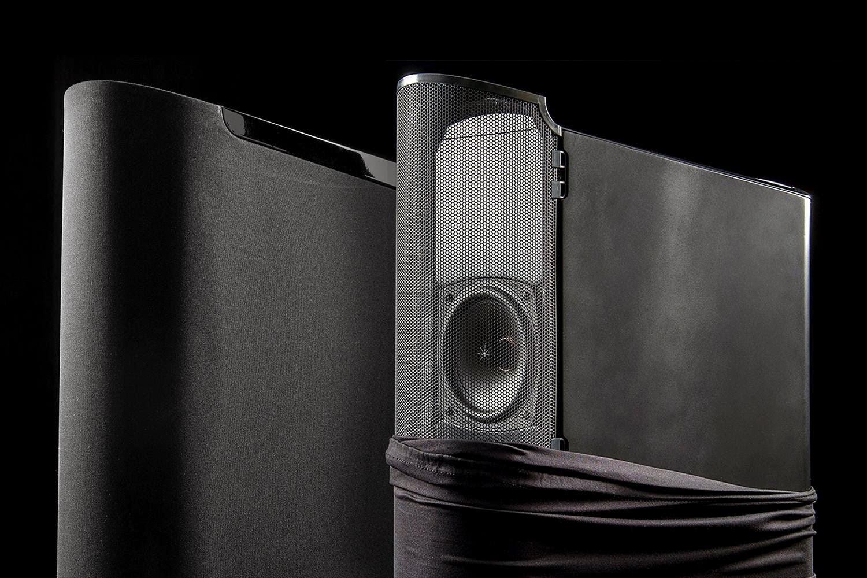 golden-ear-triton-speaker-review-1500x10
