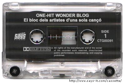 One Hit Wonder Blog