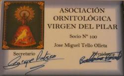 Socio de la Asociación Ornitológica Virgen del Pilar (Zaragoza)