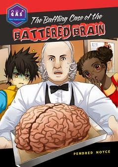 Baffling Case of the Battered Brain  cover