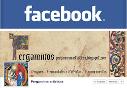 Sigue el blog desde Facebook
