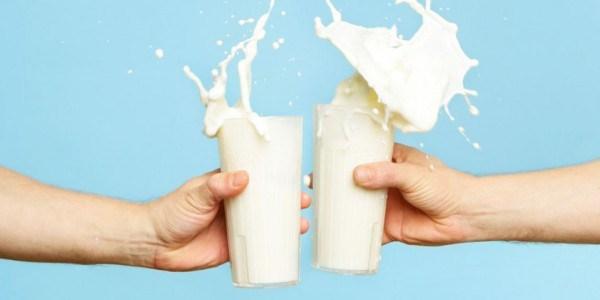 Científico de Harvard suplica que paremos el consumo de leche