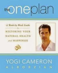 Introduction to Yogi Cameron's ____the one plan____
