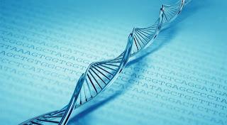 Harvard cracks DNA storage, crams 700 terabytes of data into a single gram  Dna+molecule