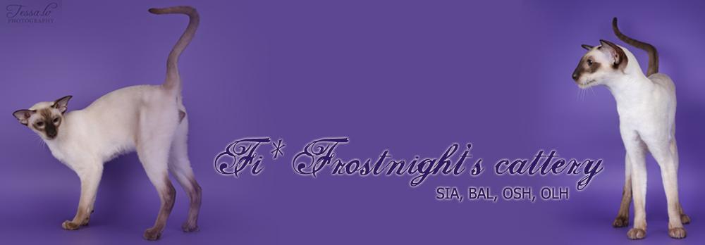 Frostnight's kissala