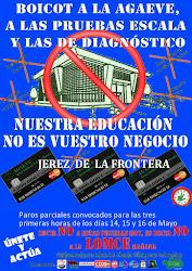 CAMPAÑA CONTRA LAS PRUEBAS DE DIAGNÓSTICO Y PAROS PARCIALES EN JEREZ