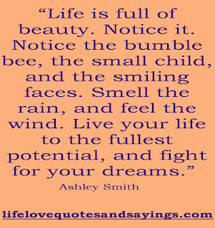 Quotes About Living Life To The Fullest Adorable Live Life To The Fullest Quotes