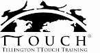 TTouch Practitioner