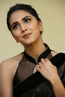 vaani kapoor new  stills in black saree(32)