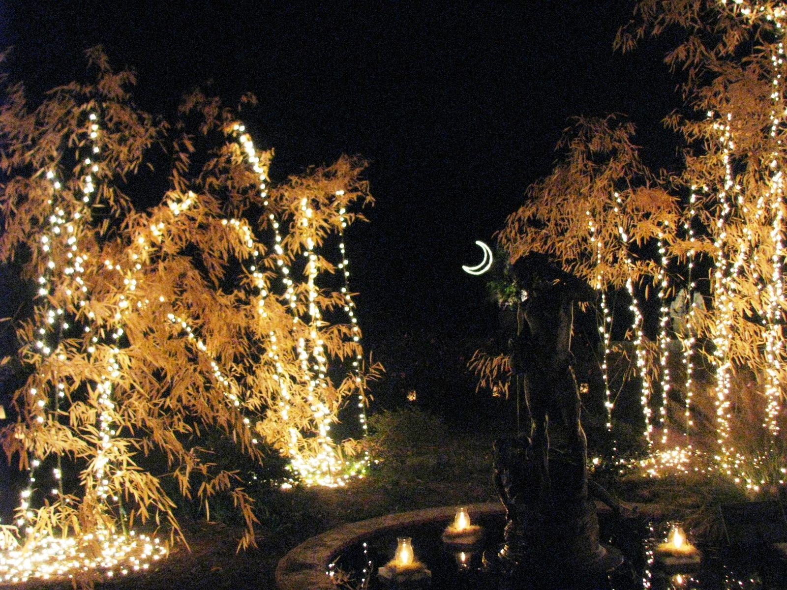 C Campbell 39 S Fine Art Night Of A Thousand Candles At Brookgreen Gardens 12 39 07