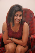 Geethanjali New Photo Shoot gallery-thumbnail-13
