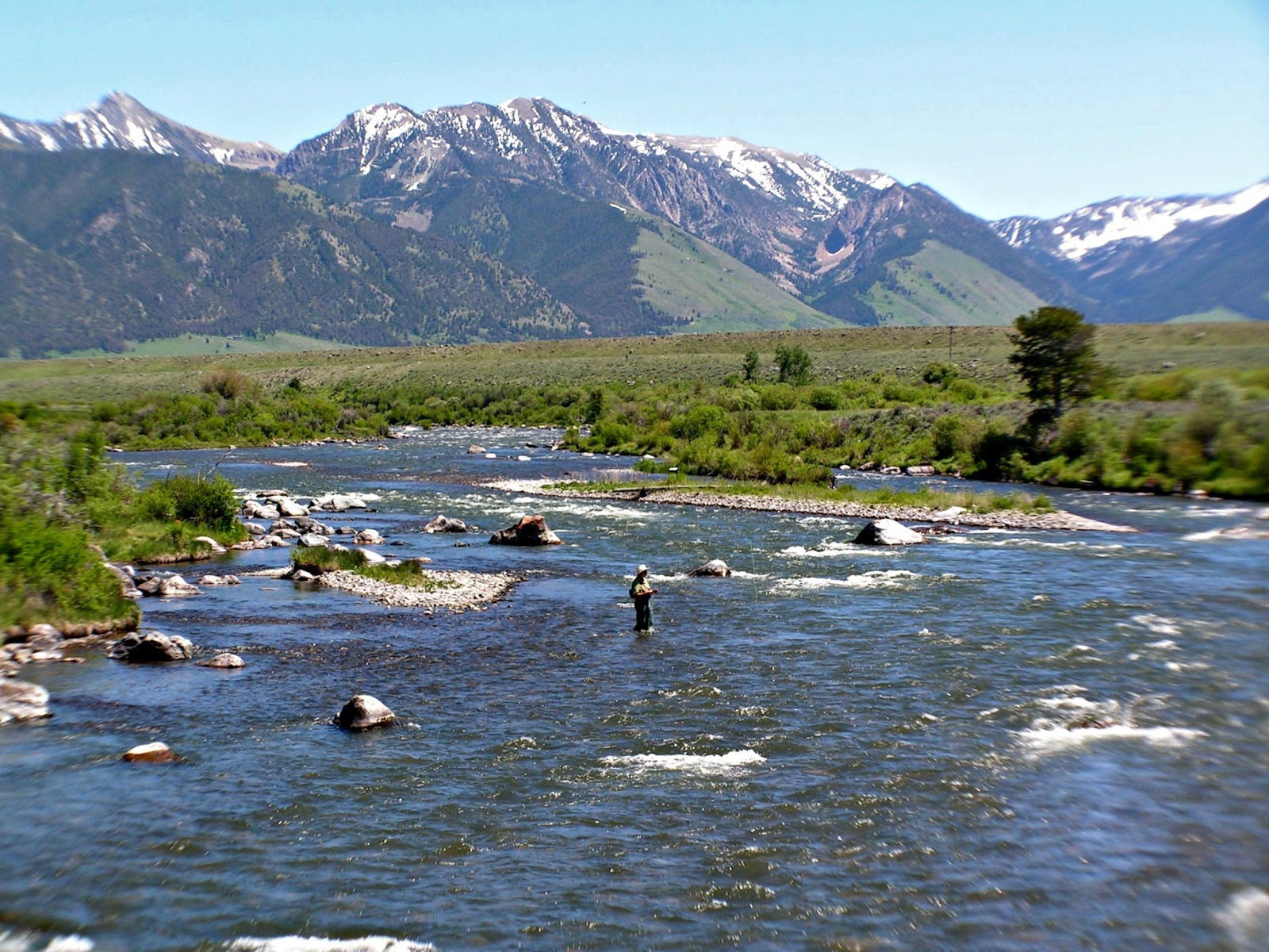 The incredible madison valley cameron montana for Fly fishing shop near me