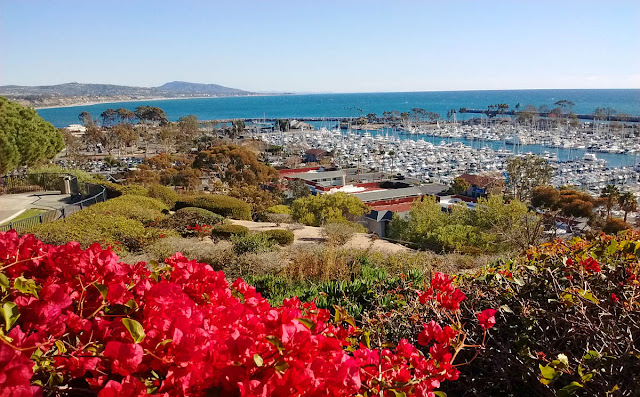Looking down on Dana Point Marina