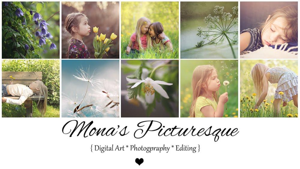 Mona's Picturesque