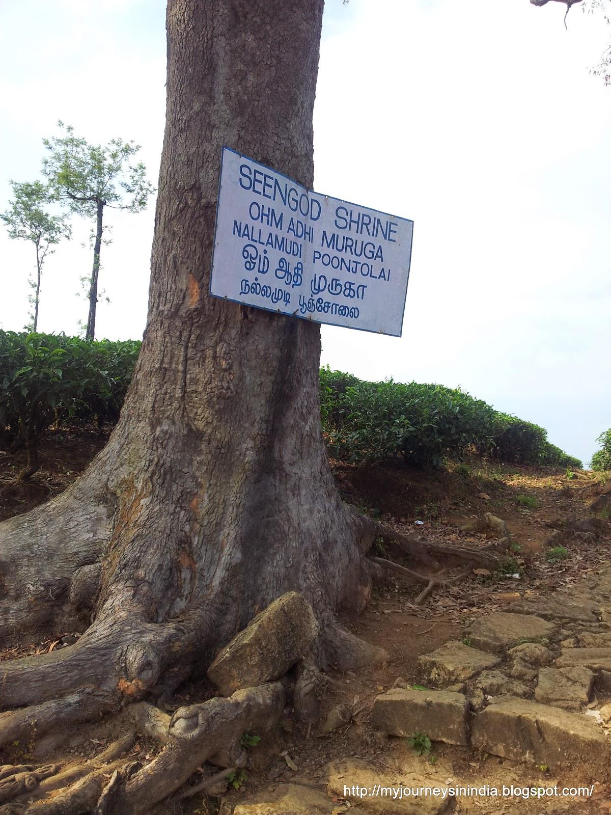 Valparai Nallamudi Pooncholai