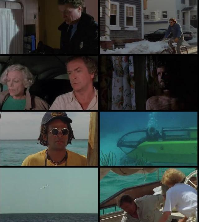 Jaws The Revenge 1987 Dual Audio Hindi 480p HDTV