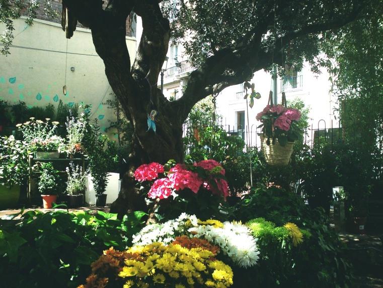 Madrid en comunidad jardines secretos de madrid for Jardin querubines