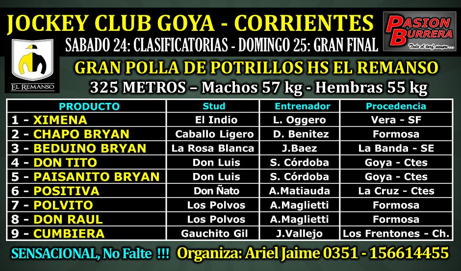 GOYA - 25 - POLLA