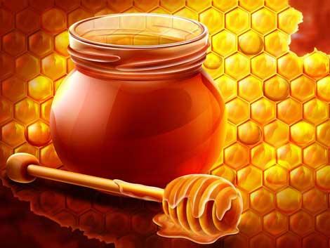 Với bệnh nhân tiểu đường, mật ong có phải là một loại thuốc ?