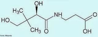 ácido pantotênico