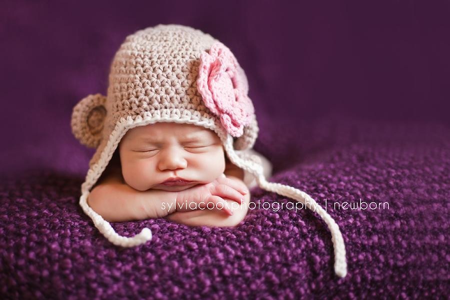 Bellevue newborn photographer