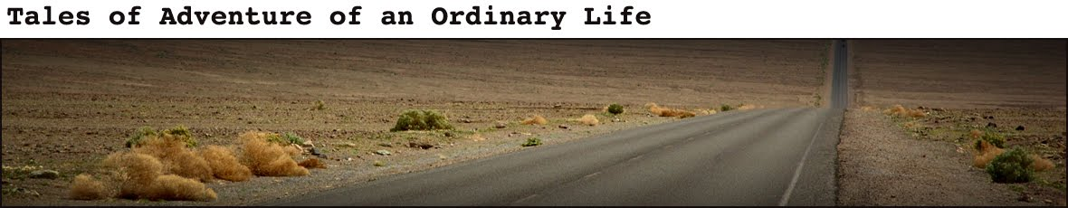 Tales of Adventure of an Ordinary Life