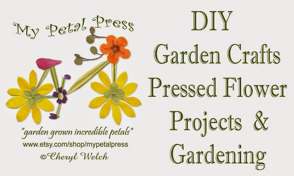 My Petal Press Garden Blog