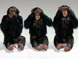 sanggahan teori evolusi