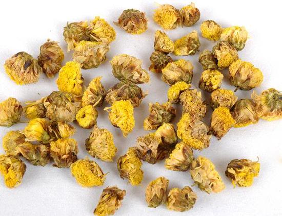 Flos Chrysanthemi Indici