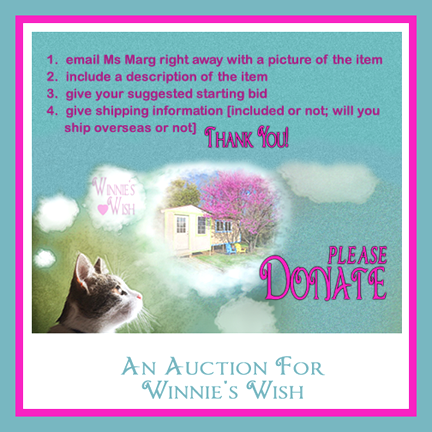 An Auction For Winnie's Wish