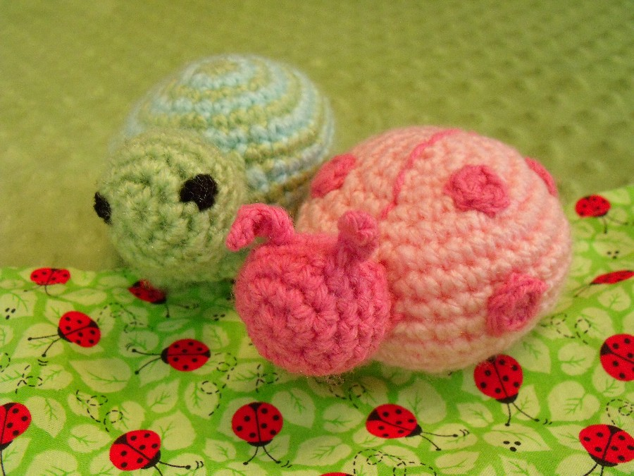 how to make a crafty turtle