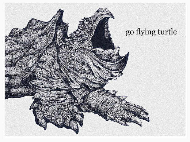 go flying turtle