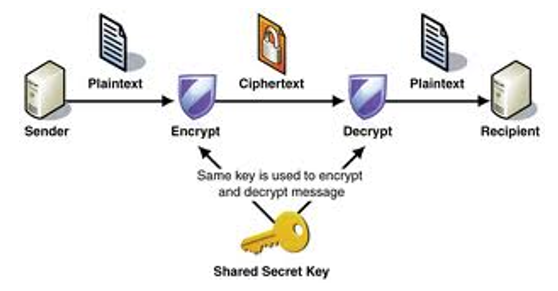 Basic difference between cryptography and steganography program