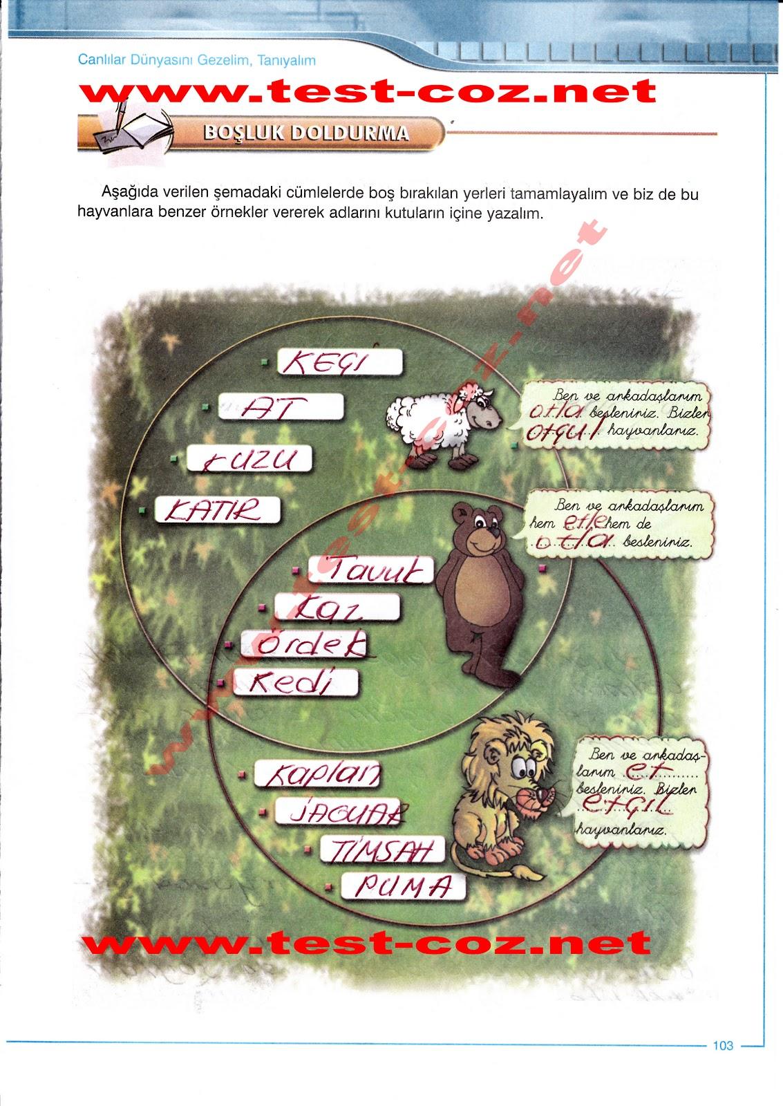 Sek yayinlari 5 sinif fen ve teknoloji çalişma kitabi 103 sayfa