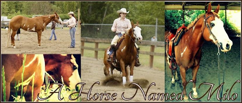 A Horse Named Milo