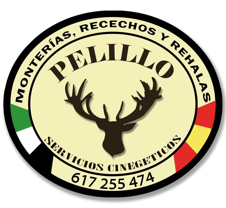 PELILLO