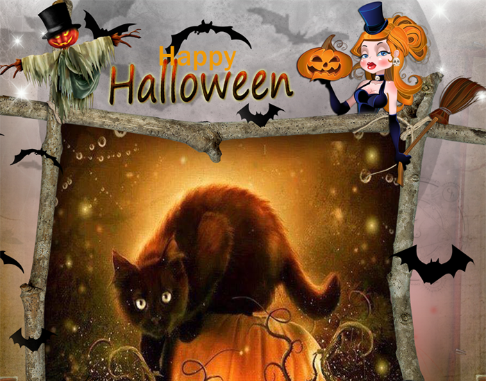 Happy Halloween Katze
